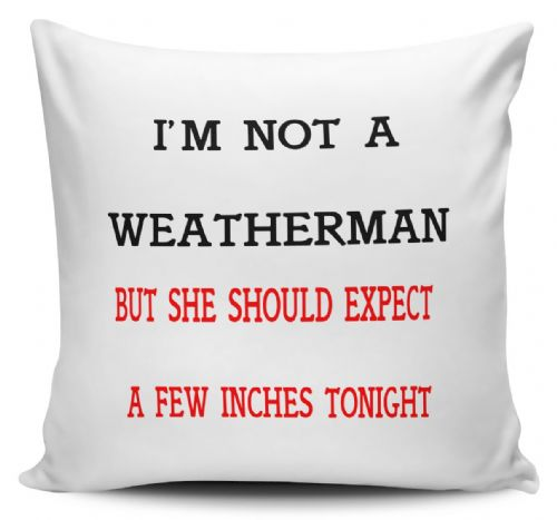 I'm Not A Weatherman But She Should Expect A Few Inches Tonight Funny Cushion